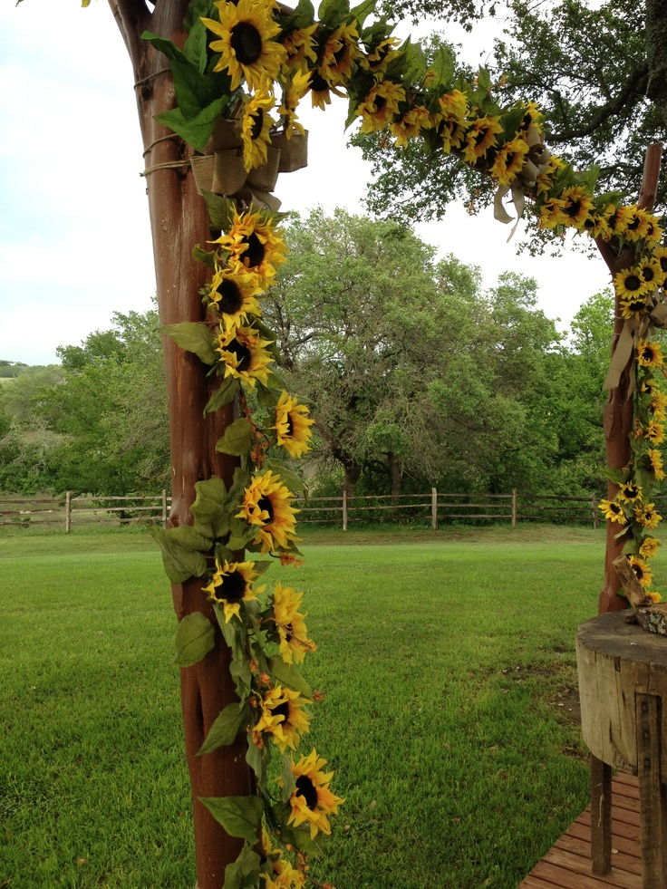 1000 Images About Sunflower Ideas On Pinterest