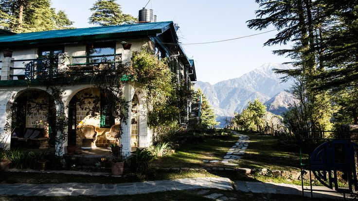 The only Dharamsala guide you need