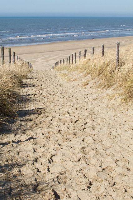 Noordwijk, Netherlands. Typical North Sea beach - sea, sand and wind!