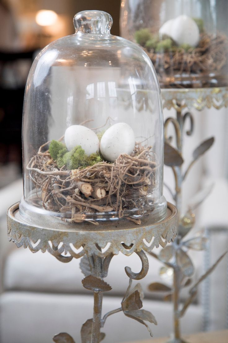 bird nest cloche cloches en verre deco paques. Black Bedroom Furniture Sets. Home Design Ideas