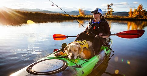 Dog Paddling: 6 tips for taking your pooch canoeing, kayaking or SUPing