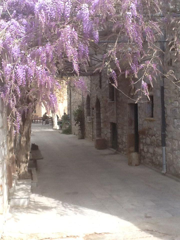 Springtime in Vessa