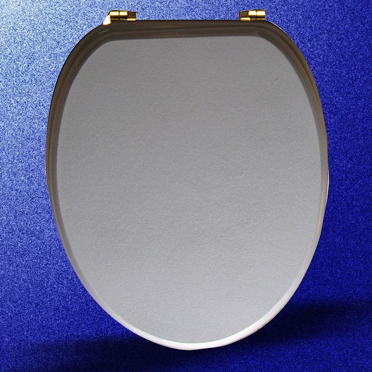 Toilet Seats Brass PVD Fiber Silver Toilet Seat