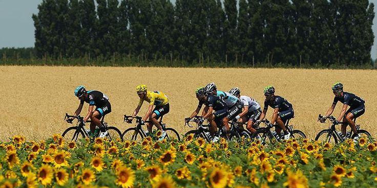 Oggi comincia il Tour de France: una guida completa per goderselo, anche se siete profani http://ilpo.st/1er7yqW