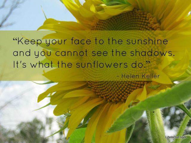 Keep your face to the sunshine and you cannot see the shadows. It's what the sunflowers do. Helen Keller quote