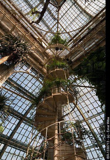 Great Palm House interior, palace gardens, Schloss Schoenbrunn Palace, Vienna, Austria, Europe