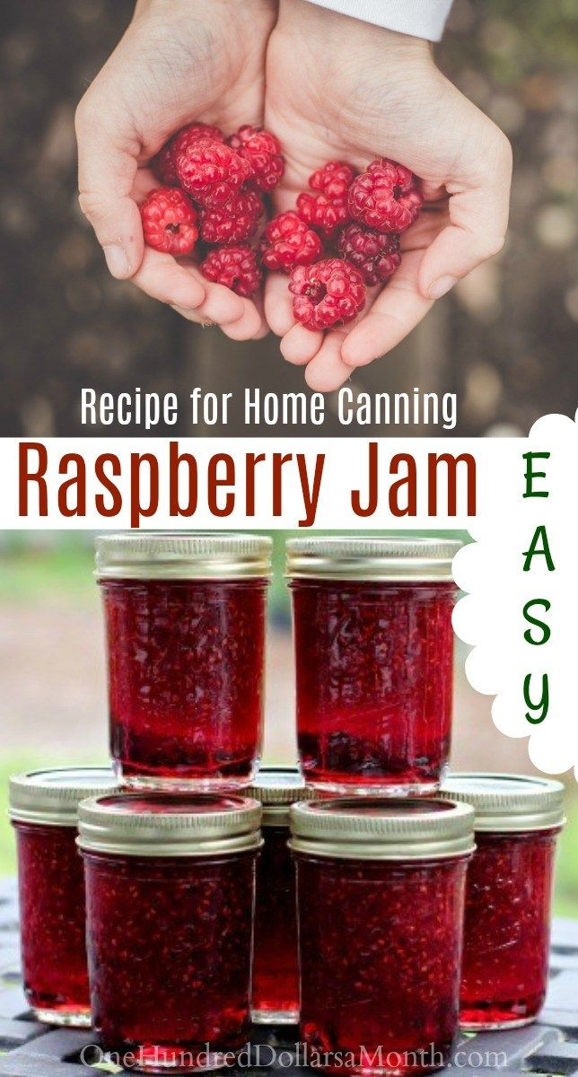 Canning 101 - How to Make Raspberry Jam - One Hundred Dollars a Month