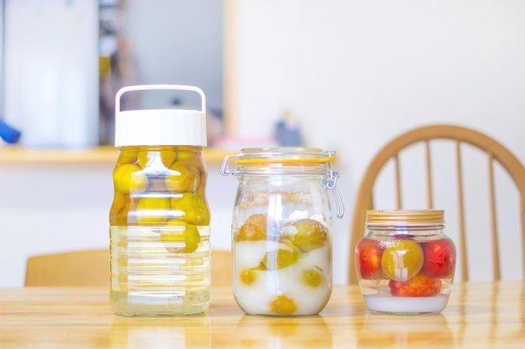 . インスタでよく見かける  梅しごと  私も家でやってみました 左から梅酒梅シロップ 最後が梅とスモモ酒です 今から出来上がりが楽しみです . #mat_and_rugfactory #マットラグ #くらしにプラス #梅しごと #梅しごと2017 #梅酒作り #梅シロップ #梅シロップ作り #スモモ #自家製シロップ