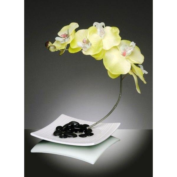 lot-de-3-assiettes-blanches-orchidees.jpg (600×600)