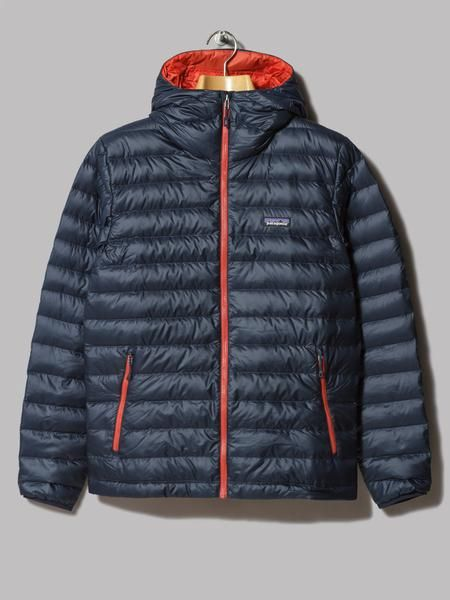 Patagonia Down Sweater Hoody (Navy Blue / Ramble Red)
