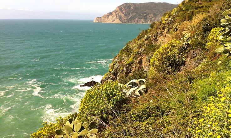 patrimoine naturel des Cinque Terre