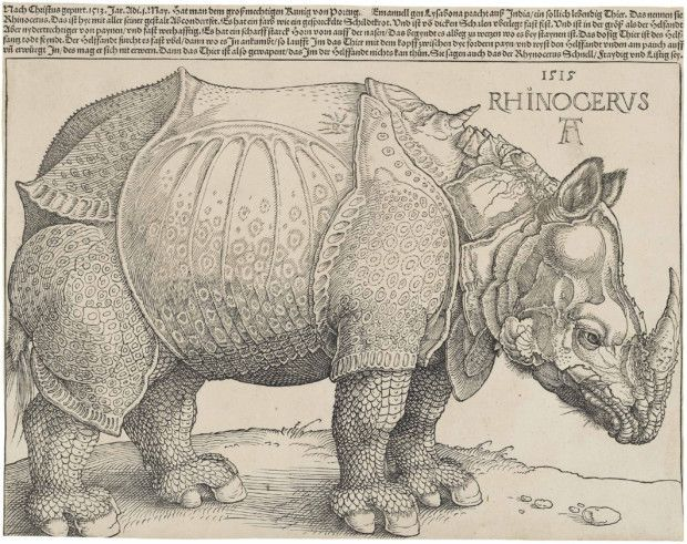Albrecht Dürer, Rhinoceros, 1515, National Gallery of Art, Washington