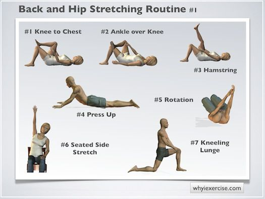 Back stretching exercises help keep your muscles comfortable and relaxed throughout the day. Use this routine to prepare your muscles for the day ahead, to cool down at the end of a workout, or relieve stress and tension at the end of a long day. See illustrations below.