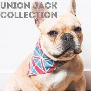 ¿Te imaginas a tu perro con una pajarita de la bandera británica o una corbata? Nosotros sí (^_^). Puedes acceder a la colección Purpleblone de Union Jack en nuestra web. #pets #mascotas @Laura Jayson Peery