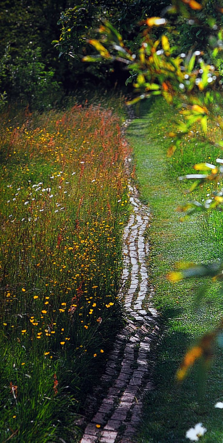 meadow vintage garden stone border
