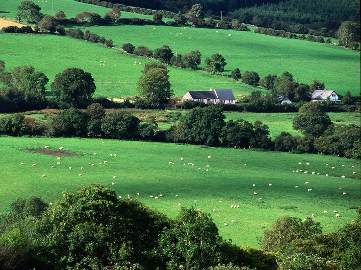 Countryside in County Cork, Ireland
