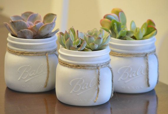 Succulents in White Painted Mason Jar Shabby by StellaDesignsShop