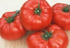 Heirloom Tomato Seeds For Sale | Buy Bulk Tomato Vegetable Seeds at Eden Brothers