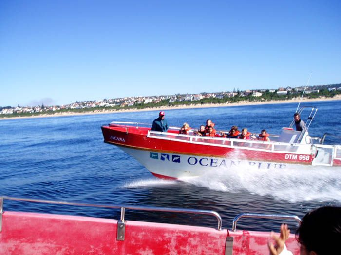 Ocean Blue Adventures - Plettenberg Bay