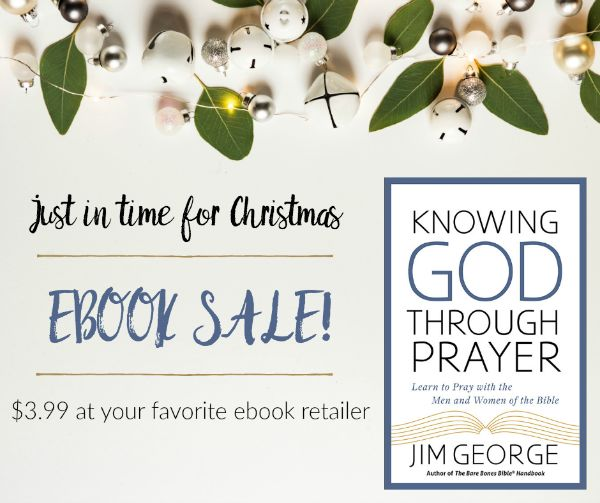 30 best jim and elizabeth george images on pinterest jesus saves give the gift of biblical wisdom and encouragement with this wonderful 399 ebook experience a deeper intimacy with god and give new life to your prayers fandeluxe Image collections