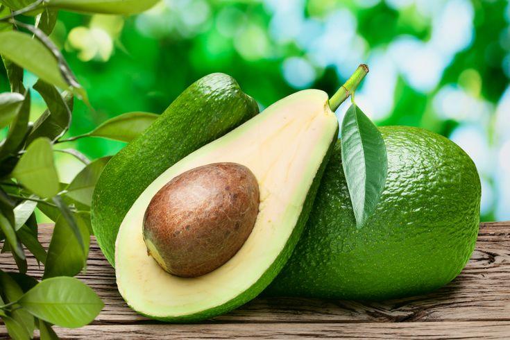 L'avocado, proprietà benefiche e usi in cucina   Mangiarebuono.it