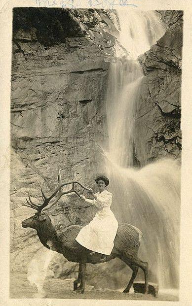 Красивый водопад, гордый олень, элегантный всадник… Да ведь перед нами – явный прототип Трандуила из трилогии «Хоббит»!