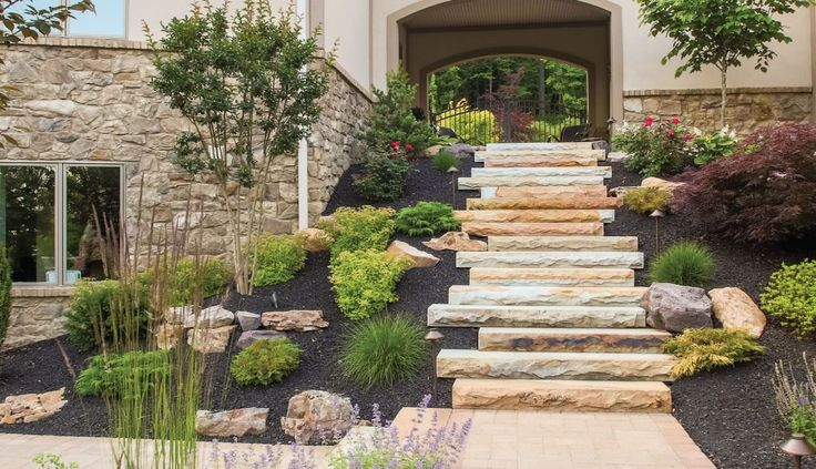 10 Things You Must Know About Landscaping | DIY
