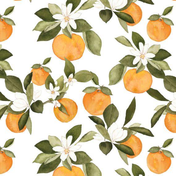Red Orange Kitchen Ideas: 25+ Best Ideas About Orange Kitchen Decor On Pinterest
