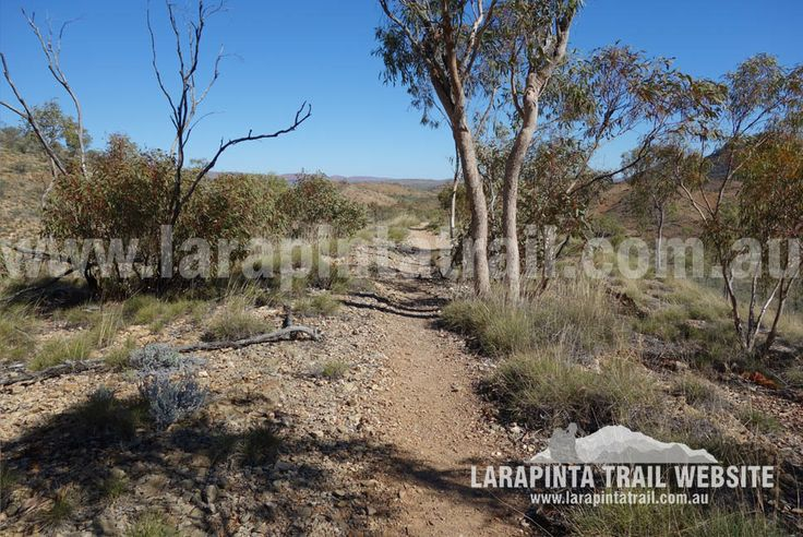 Happy Ryge; a pleasant hilltop part of Section 10. Image looking west. © Explorers Australia Pty Ltd 2014