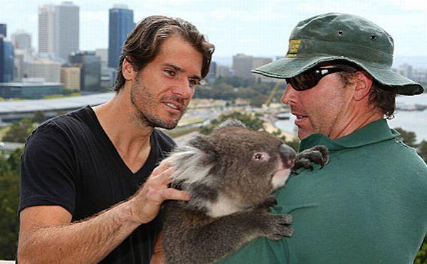 Tommy Haas cu un urs koala