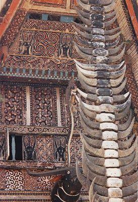 #Toraja traditional house. Tana Toraja, South #Sulawesi. #Indonesia