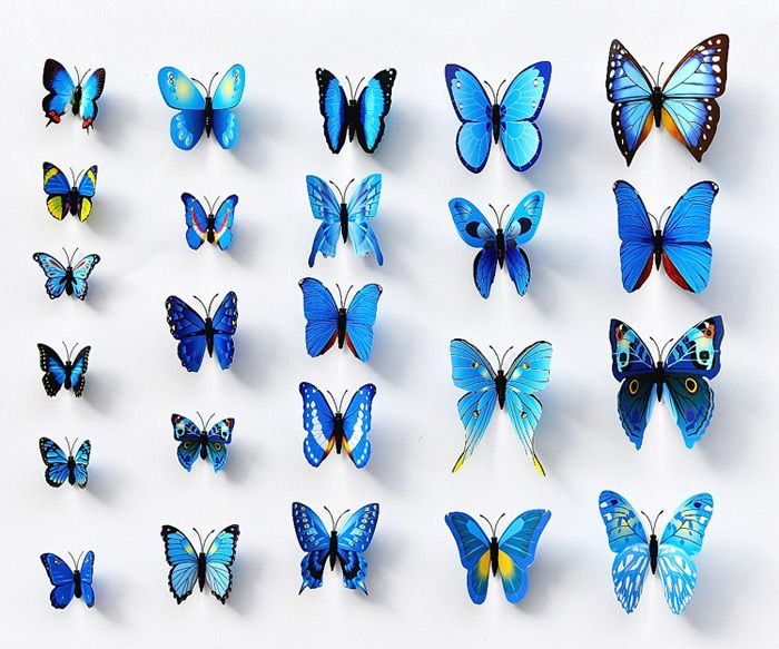 erfly decor erfly room decor for s erfly wallpaper android b