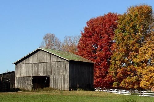 Country barn in Ky.
