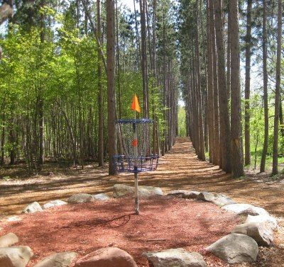 Disc golf at Blue Ribbon Pines