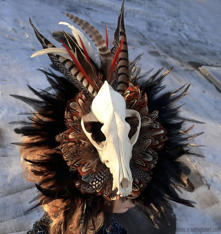 Real Skull Headdress Adorned With Black Rooster Duck And