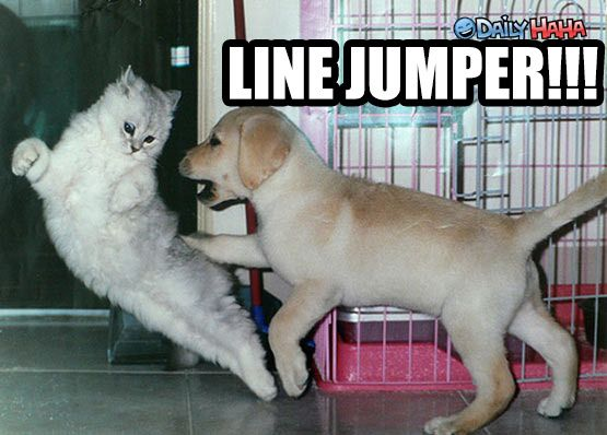 Line Jumper. Perfect for classified ads drama.