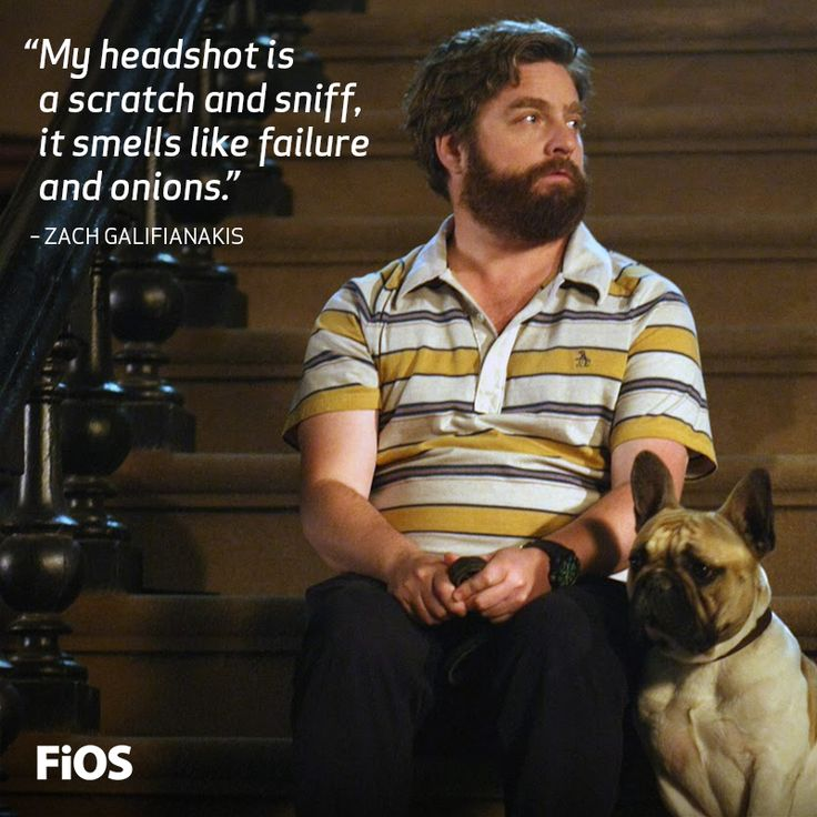 The hilarious, Zach Galifianakis. #Quote