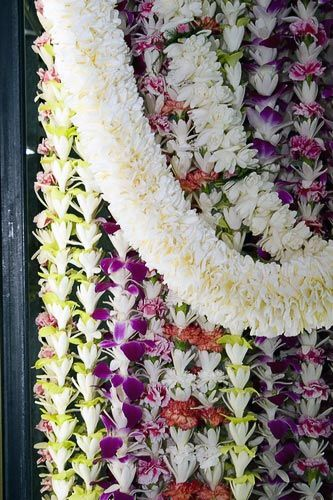 Oahu Photos at Frommer's - You'll find leis of every color and description for sale in Chinatown.  www.sameepam.com