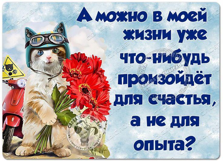 Ямальская, прикольные открытки со статусами