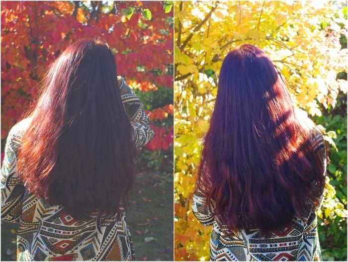 vegetale acajou coloration vegetale reflets coloration campeche reflets henne naturel soins des cheveux vie naturel jamila jamila bois - Recettes Coloration Naturelle Pour Cheveux Blancs