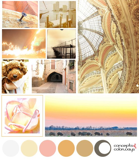 1000+ Images About Mood Boards On Pinterest