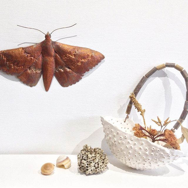 This is one ofthe moth artworks I've made recently, now available @coastalartisans gallery on the Sunshine Coast. It's made from a reclaimed piece of copper- hand-cut, embossed and soldered together...modeled off the paper template I made and featured on my feed a while ago. Brenda of Coastal Artisans Gallery has carefully selected local and regional works, with a strong focus on the environment, nature, as well as eco/sustainability. Just in time for mothers day...YAY! #australianart…