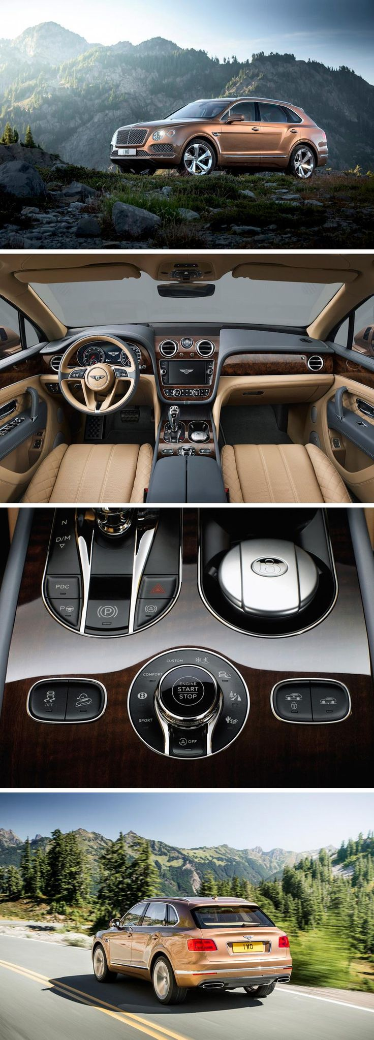 """Bentley describes its £160,200 model as """"the fastest, most powerful, most luxurious & most exclusive SUV in the world""""- the new twin turbocharged W12, which is mounted north-south in the nose, packs 600bhp at 6000rpm and 663lb ft of torque between 1250rpm and 4500rpm. It drives through an eight-speed, paddle-shift ZF automatic to a four-wheel drive system featuring a Torsen centre differential...x"""