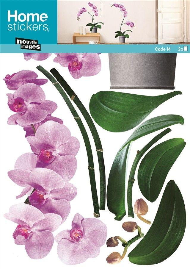 Roze Orchideeën