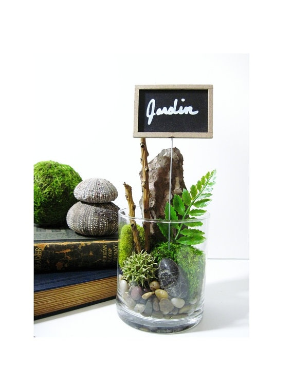 Le jardin forest treasures terrarium with chalkboard plant for Jardin glass jars