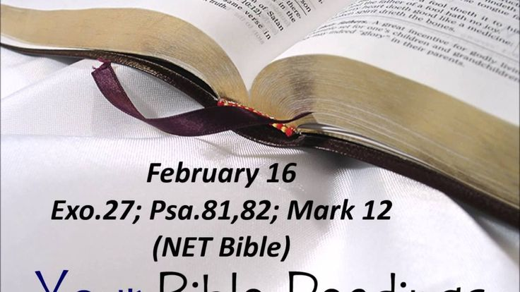 Your Bible Readings for February 16