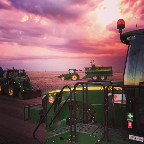 """Early evening on the farm"" Credit to:"
