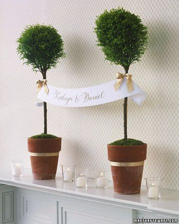 live plants for christmas wedding reception | Wedding Topiaries and Wedding Centerpieces | Truly Engaging Wedding ...