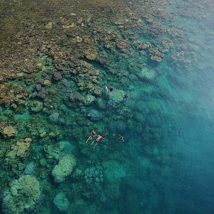 The best place for vacation in Central Java, Karimun Jawa island, Indonesia   Photo by: Nugroho  IG: @ahmadnugroho_