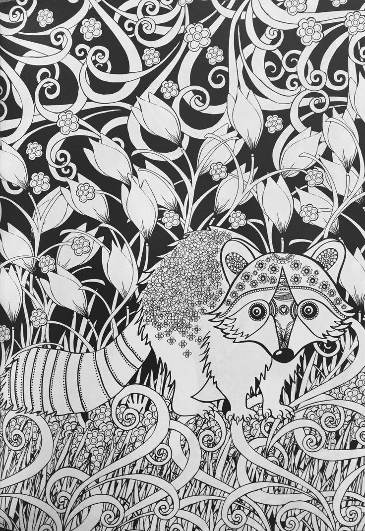 23 best desenho creative midnight animal forest coloring book